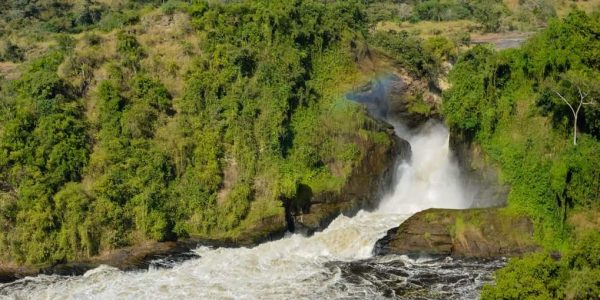 3 Days Murchison Falls safari Uganda - Wild Jungle Trails Safaris