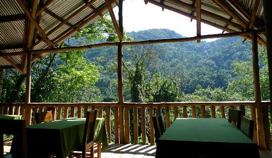Buhoma Community camp in Bwindi Impenetrable National Park