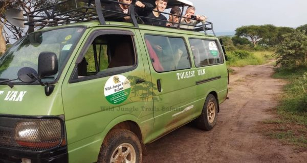 Car Hire Rentals in Uganda Rwanda - Wild Jungle Trails Safaris