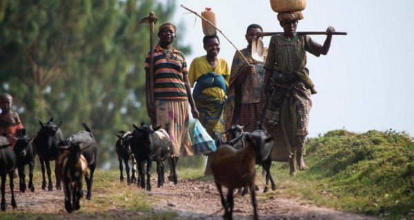 Cultural encounters in Elgon National Park