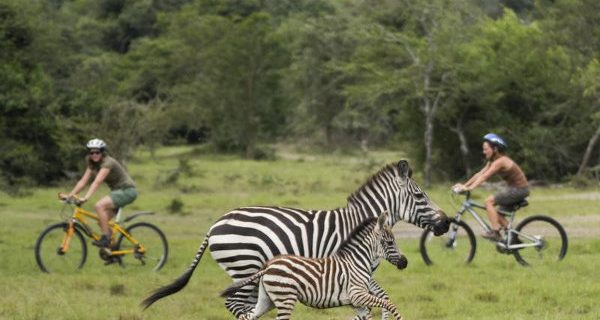 Cycling safaris at Lake Mburo National Park