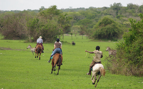 Horseback riding in Lake Mburo National Park
