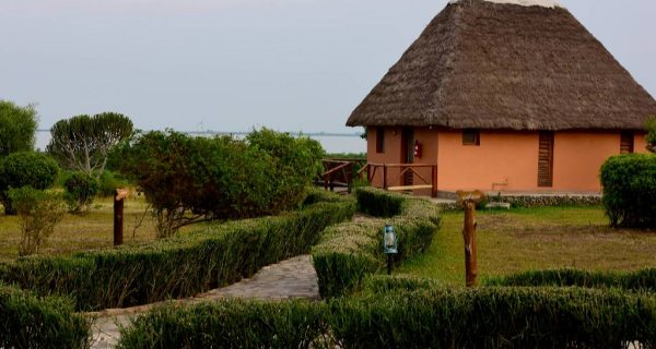 Ihamba Safari Lodge in Queen Elizabeth - Wild Jungle Trails Safaris