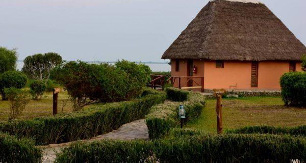 Ihamba Safari Lodge in Queen Elizabeth - Wild Jungle Trails Safaris