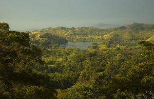Kibale Forest National Park Uganda