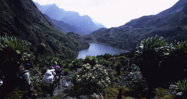 Rwenzori Mountains National Park Uganda