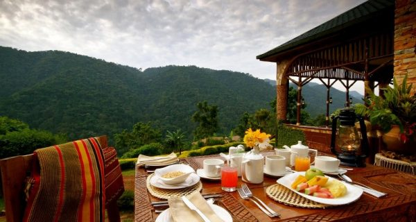 Silverback Lodge in Bwindi Impenetrable National Park