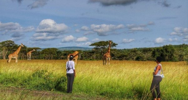 Walking safaris in Lake Mburo National Park