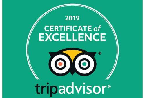 tripadvisor - Wild Jungle Trails Safaris Uganda