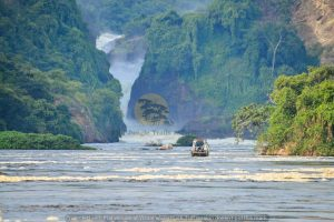 2 Days Murchison Falls Safari Uganda