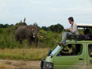 2 Days Murchison Falls National Park Safari
